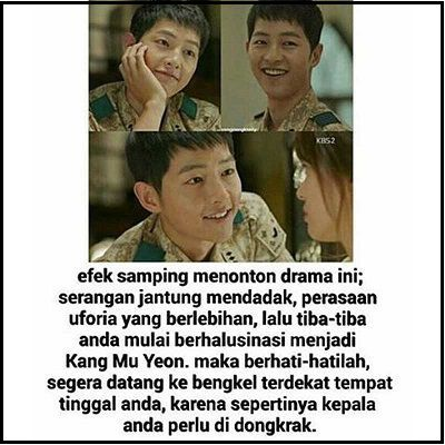 meme descendants of the sun